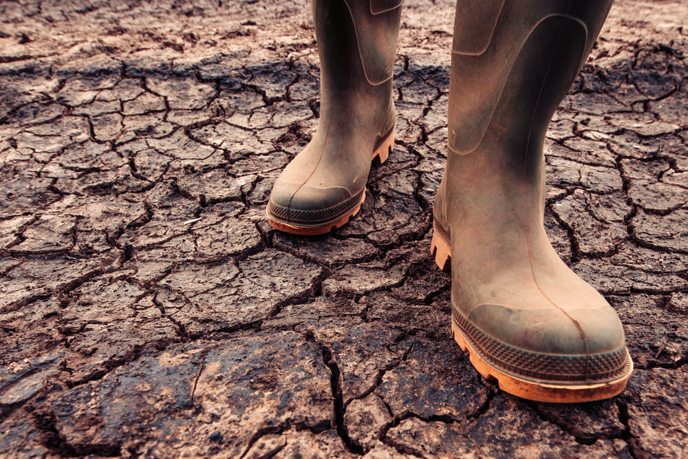 farmer in boots on dry soil